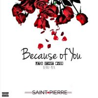 Saint Pierre - Because Of You (Berri Mix)