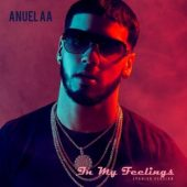 Anuel AA - In My Feelings (Spanish Version)